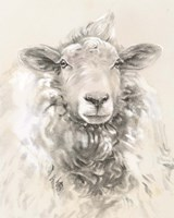 Sketched Farm Portraits I Fine-Art Print