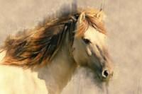 Blended Horse I Fine-Art Print