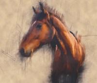 Blended Horse III Fine-Art Print