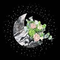 Luna I Fine-Art Print
