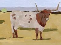 Longhorn Cattle II Fine-Art Print