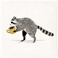 Rascally Raccoon III Fine-Art Print