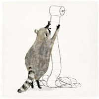 Rascally Raccoon IV Fine-Art Print