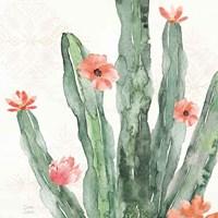 Sweet Southwest VII Fine-Art Print