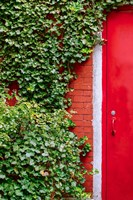 Red Garden Door Fine-Art Print