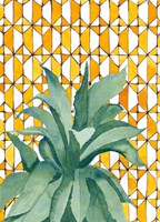 Yellow Tile Agave Fine-Art Print