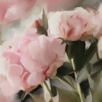 Floral Arrangement II Fine-Art Print