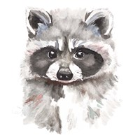Baby Raccoon Fine-Art Print