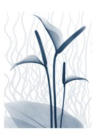 Blue Dawn 1 Fine-Art Print
