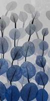 Sapphire Bunch 2 Fine-Art Print