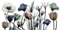 Floral Neutrals 1 Fine-Art Print