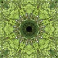 Colorful Kaleidoscope 11 Fine-Art Print