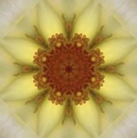 Colorful Kaleidoscope 21 Fine-Art Print