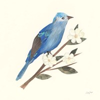 Birds and Blossoms III Fine-Art Print