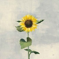 Sunny Blooms II Fine-Art Print