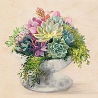 Festive Succulents II Fine-Art Print