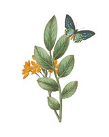 Greenery Butterflies I Fine-Art Print