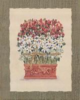 Daisy Topiary Fine-Art Print