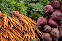 Carrots and Beets Fine-Art Print