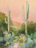 Sunrise Desert I Fine-Art Print