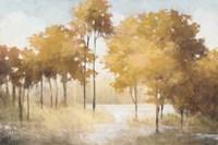 Autumn Lake Gold Fine-Art Print