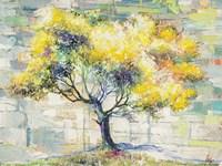 Albero del Sole Fine-Art Print