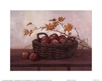 Winesap and Maples Fine-Art Print