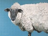 Wooly Sheep Fine-Art Print