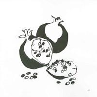 Pomegranate II BW Fine-Art Print