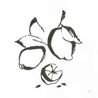 Lemons BW Fine-Art Print