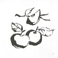 Apples BW Fine-Art Print