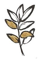 Leafed IX Fine-Art Print