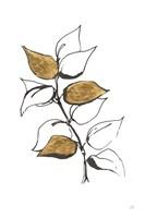 Leafed VIII Fine-Art Print
