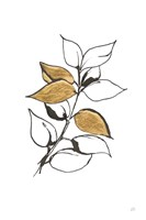 Leafed VII Fine-Art Print
