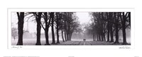 Avenue of Trees BW Fine-Art Print