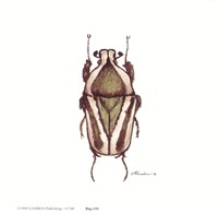 Bug #10 Fine-Art Print