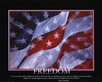 Patriotic-Freedom Fine-Art Print