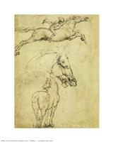 Sketch of a Horse Fine-Art Print