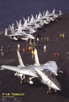 Airplane F-14 Tomcat Wall Poster