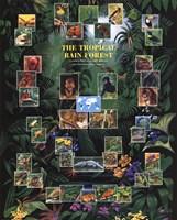 Tropical Rain Forest movie poster Fine-Art Print