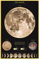 Moon Fine-Art Print