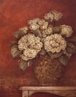 Villa Flora Hydrangeas Fine-Art Print