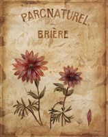 Parcnaturel I Fine-Art Print