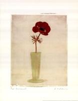 Red Anemones I Fine-Art Print