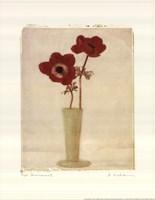 Red Anemones II Fine-Art Print