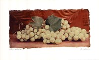 Grape Harvest II Fine-Art Print