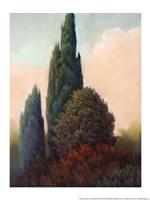 Tuscan Trees I Fine-Art Print