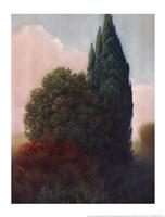Tuscan Trees II Fine-Art Print