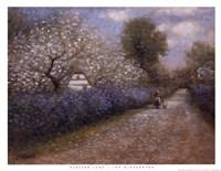 Blossom Lane Fine-Art Print