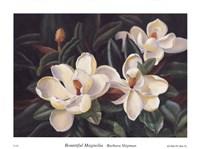 Bountiful Magnolia Fine-Art Print